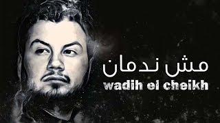 Wadih El Cheikh - Mech Nedman | وديع الشيخ - مش ندمان