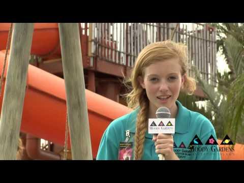 Palm Beach Fun at Moody Gardens, Galveston Island HD