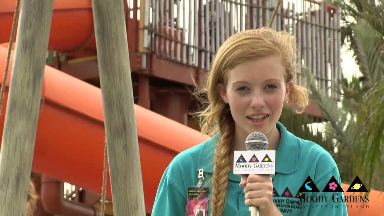 Palm Beach Fun at Moody Gardens, Galveston Island HD - YouTube