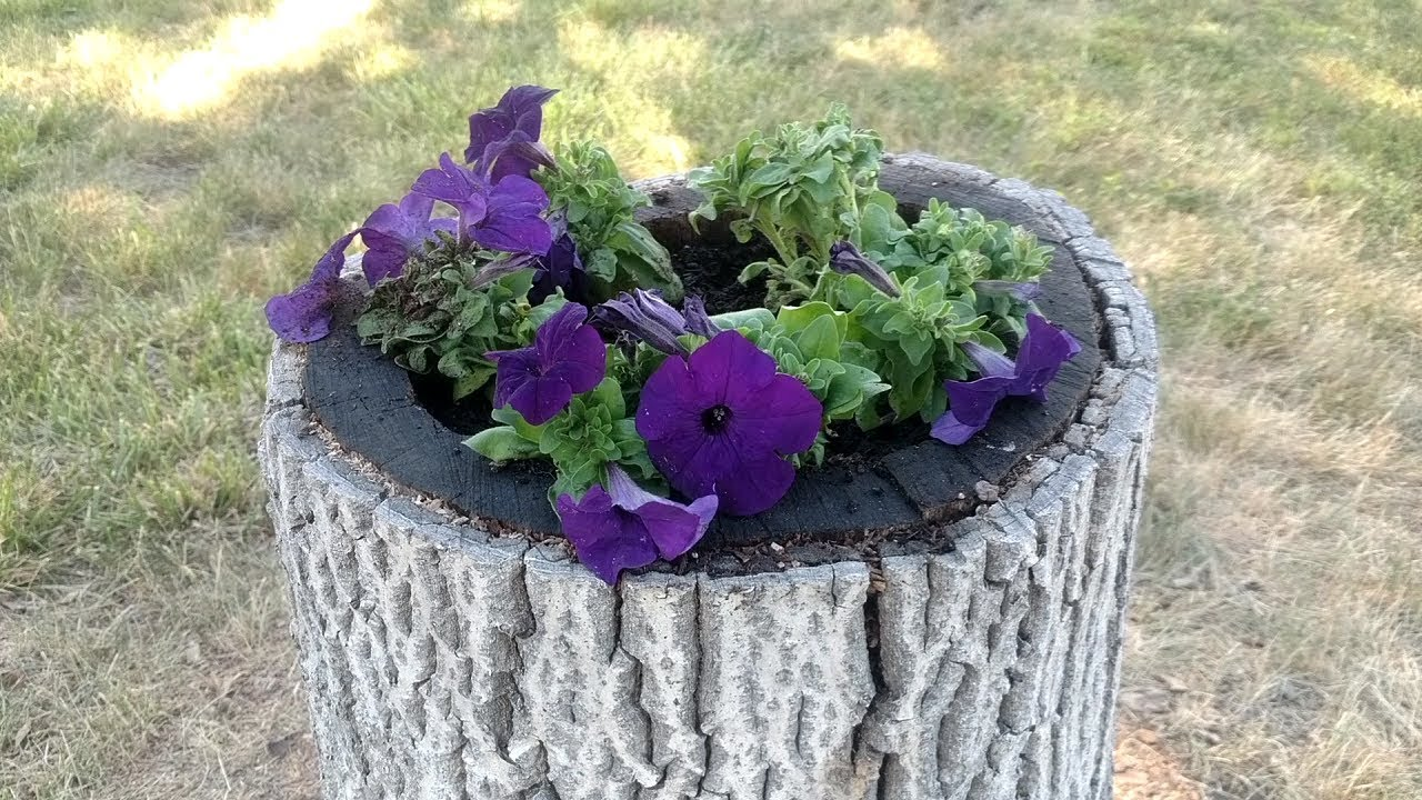 Turn A Stump Into A Planter Youtube