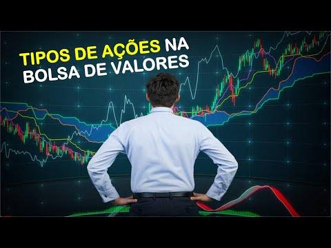 Tipos De Ações Na Bolsa De Valores | Em Qual Investir?