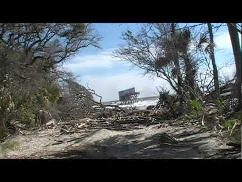Charmant Hunting Island State Park Point Of Interest: Cabin Road. 1
