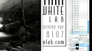 Dalmatian B&w Custom Lab Converts Negatives And Raw Files To Beautiful B&w Images
