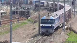 JR貨物 ダイヤ改正前日に撮影できた4本の下り貨物列車(H31.3.15)