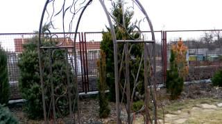 видео Перголы из металла своими руками: кованые арки, фото