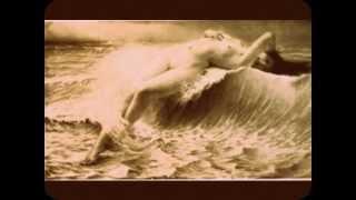 Daniel Schell & Karo / Souvenir D' une vague