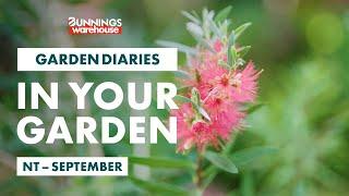 Gardening in September | NT | Bunnings Garden Diary