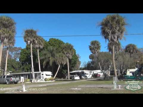 Full Download Floida Rv Park With Alligator