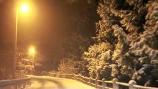 رانندگی در مستی شاهین نجفی
