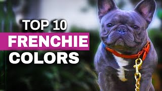Top Ten French Bulldog Color Trends (2020)