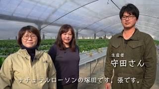 【ナチュラルローソン】愛知豊橋のロイヤルクイーン苺を取材してきました!