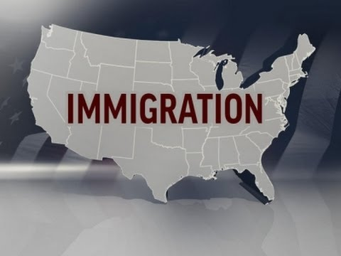 White House: Obama to Delay Immigration Action