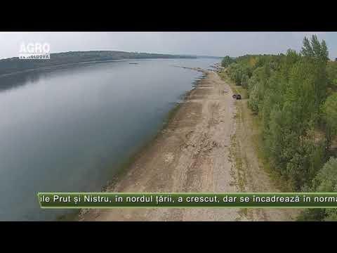 Nivelul Apei în Prut și Nistru S-a Ridicat – AGRO TV News