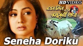 SENEHA DORIKU (SAD) | Sad Film Song I TO BINA  MO KAHANI ADHA I Archita | Sidharth TV