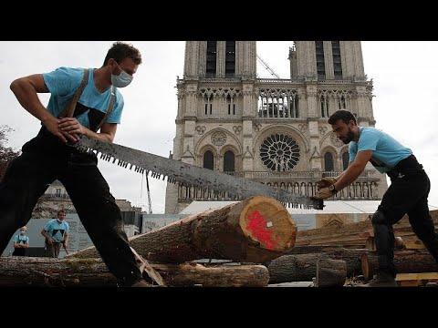 شاهد: نجارون يستعرضون مهاراتهم أمام كاتدرائية نوتردام في باريس …
