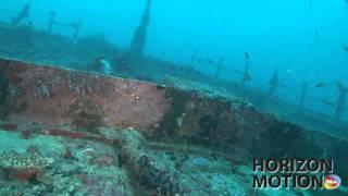 FULL HD 1080P 馬爾地夫 Maldives 魚 熱帶魚 沉船 aq0002882
