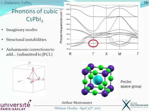 Dielectric properties in Hybrid and Inorganic Perovskite Materials for PV Applications