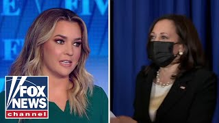 Pavlich on Harris' 'cringey' interview: There's a reason she got zero votes
