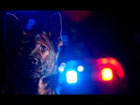 Police K9 Tribute