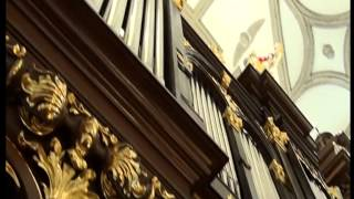 Katedra Zamość Organy