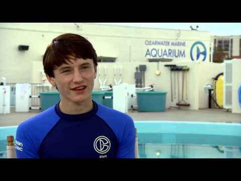 """Dolphin Tale 2: Nathan Gamble """"Sawyer Nelson"""" Behind the Scenes Movie Interview"""