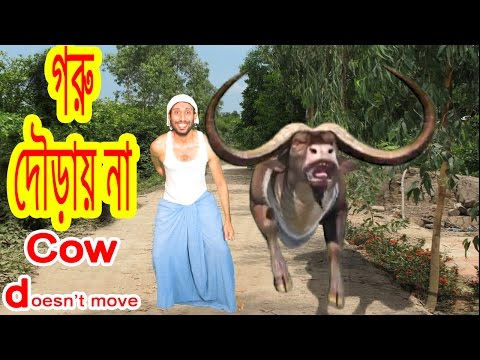 cartoon cow 🐮 fun run 🐄 chili peppers 🌶 New Bangla Funny Video 😀 Dr.Lony