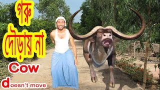 Problem-Goru douray na. সমস্যা-গরু দৌড়ায় না। Cow does not move.Bangla funny video by Dr.Lony .