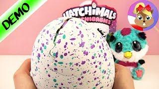 Hatchibabies wykluwają się Z JAJA   NARODZINY słodkiego pisklaczka Hatchimal BABY   Unboxing demo
