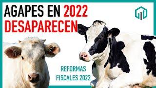 AGAPES DESAPARECERÍA EN 2022   REFORMAS FISCALES 2022