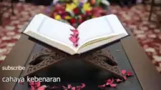 قرآن كريم بصوت جميل❤  بدون حقوق نشر