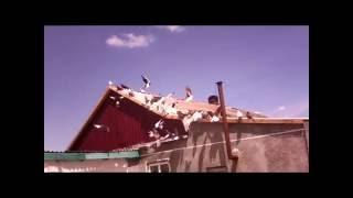 Голуби Крыма № 3 2016(Дата: 11.06.2016 Время 13:35., 2016-06-11T11:51:21.000Z)