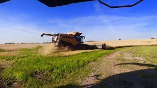 the-combines-are-rolling-2019-wheat-harvest-day-1
