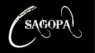 Sagopa kajmer al bide burdan yak şarkı sözü