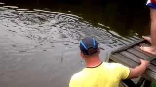 Рыбалка на Калиновке