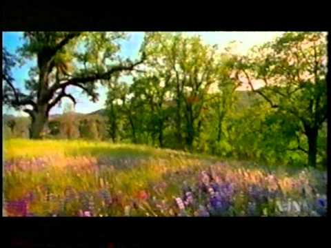 Big Sur Documentary  Pt. 2