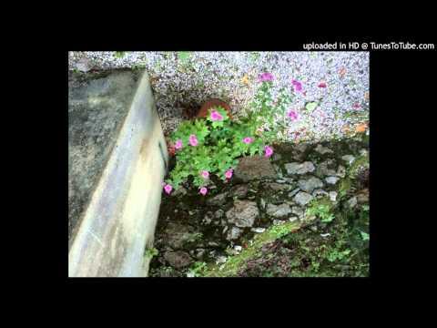 V/A Weightless Vol 1. - Different Circles