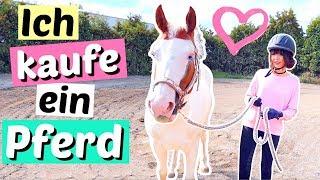 Ich kaufe ein PFERD 😳 mein eigenes Pony ❤️ | ViktoriaSarina