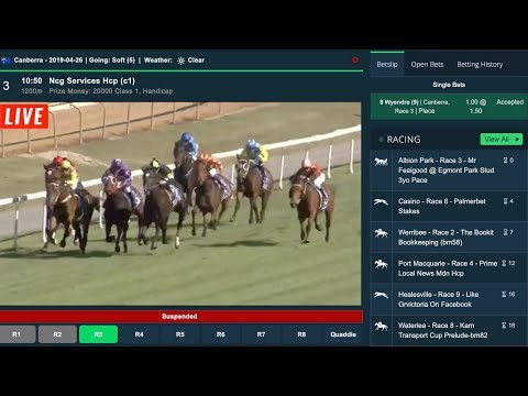 Horse racing betting odds comparison spread betting explained simply red