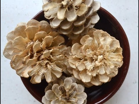 How to Bleach Pinecones Tutorial