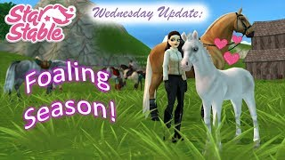 Star Stable Online; Wednesday Update ~ Foaling Season