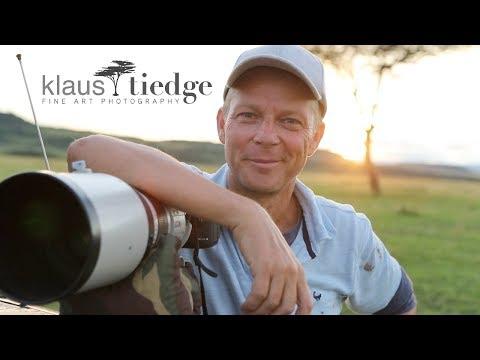 Klaus Tiedge - Wildlife Photography - PRIDE OF AFRICA