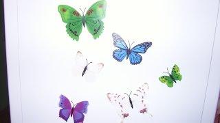 Обзор декоративных бабочек магнитов. Китайский Проспект.
