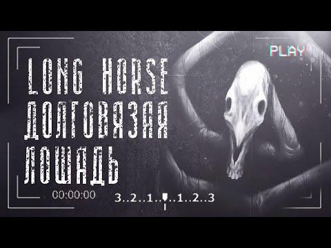 Все факты о долговязой лошади | long horse