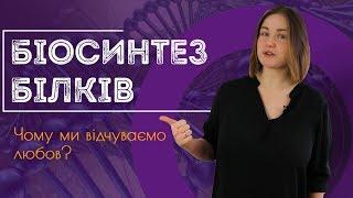 Підготовка до ЗНО з біології: біосинтез білків. Принцип комплементарності  / ZNOUA