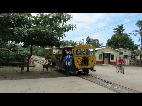Old Banana Train trip from La Union to Cuero Y Salado Wildlife Refuge - Honduras
