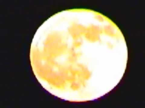 Coyote Howling at the Full Moon - YouTube  Coyote Howling ...