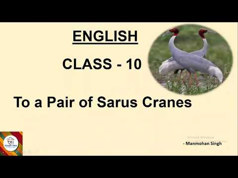 #ENGLISH#STD 10#SSLC KARNATAKA BOARD#POEM-1 TO A PAIR OF SARUS CRANE#EASY EXPLANATION#SCORPIO CLASS#