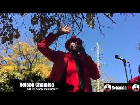 Watch Nelson Chamisa working up MDC crowd with a song