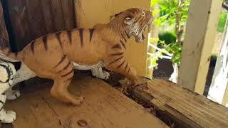 A Big Cat's Pride(EP14)-Toy Animal Series-