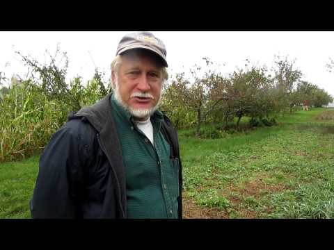 Mark Fulford on System of Crop Intensification (SCI), September 22, 2012
